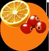 Апельсин / Клюква